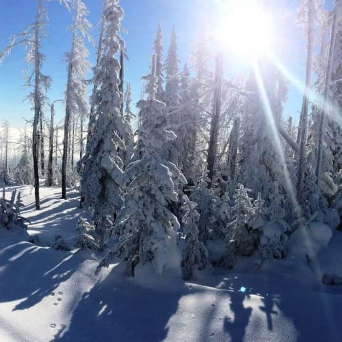 Mt. Timothy
